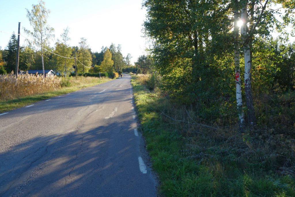 Village road before construction works