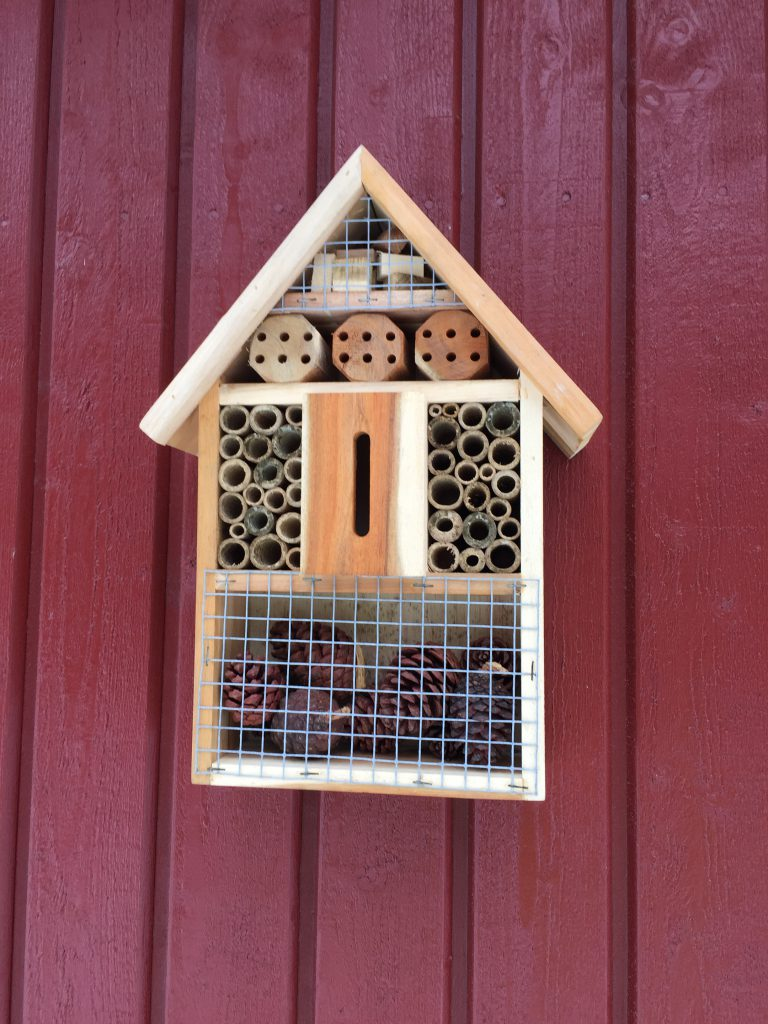 Winter nestbox for insects