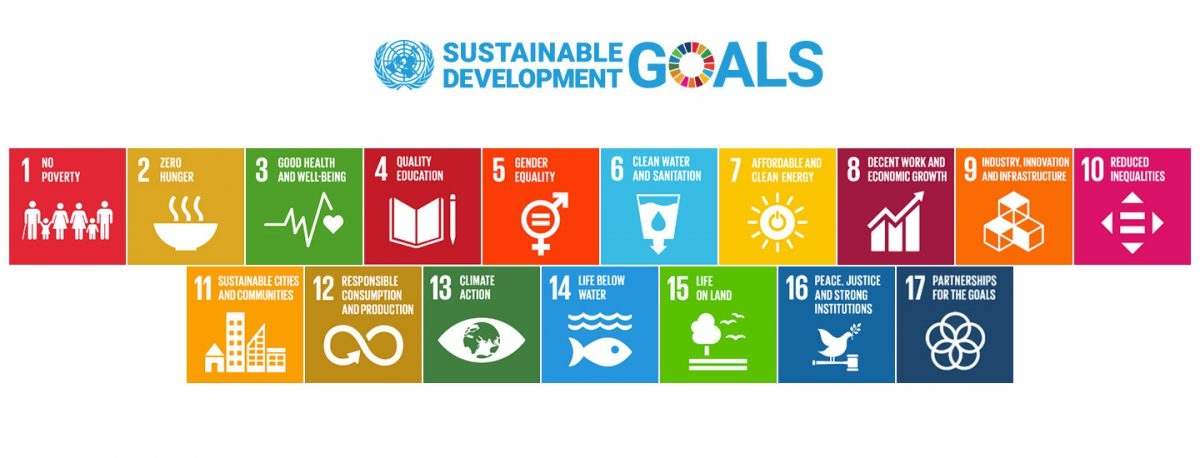 The UN Sustainable Development Goals (SDGs) set out a pathway towards sustainability and a better future through sustainable development.