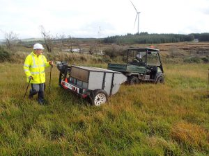 Harvesting of purple grass seed on site